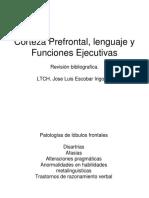 patología frontal del lenguaje