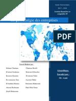 La géostratégie des entreprises.pdf
