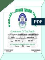 Punjab Vocational Training Councul