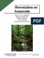 deforestation-amazonie.pdf