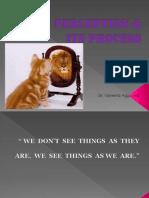 Perception new-