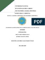 MONOGRFIA DE BUENAS PRACTICAS AGRICOLAS   BPA (1)