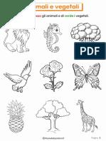 Schede-Didattiche-Animali-Vegetali