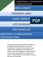 Objetivos y La Naturaleza Organizacional