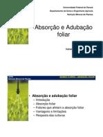 absorcaofoliarpos