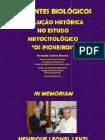 CORANTES HISTÓRIA.pdf
