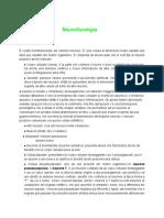 Appunti Neurofisiologia