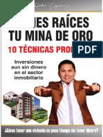 BIENES-RAÍCES-TU-MINA-DE-ORO (1) (1)