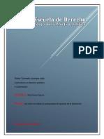 ensayo del presupuesto de egresos de la federacion