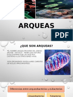 arqueas biotecnologia.pptx
