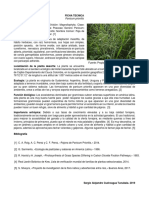 taxonomia.docx