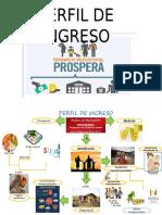 PERFIL DE INGRESO .docx