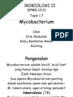 T 1.7 Mycobacterium