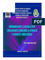 HONGOS_VERDADEROS_Y_ORG_SIMILARES_2010.pdf