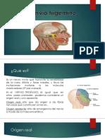 nervio trigemino.pptx