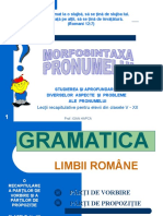 0morfosintaxa_pronumelui