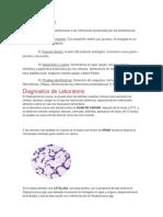 Diagnóstico Microbiano