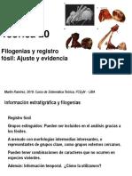 Teo 20 Registro fosil.pdf