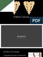 Fraktur Coccyx - RSUD Ende.