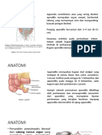 Anatomi Apendiks