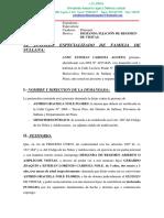 DEMANDA DE REGIMEN DE VISITAS