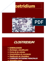 clostridium-091102154524-phpapp02