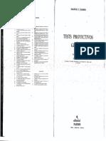 HAMMER-Tests proyectivos graficos