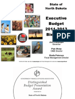 executivebudgetsummary2011-13