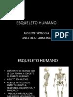 HUESOS DEL CRANEO.pptx
