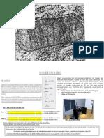 ACROBAT READER NCours+structure_fonctionDNA_20_11_2017.pdf