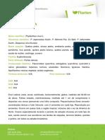 QUEBRA-PEDRA.pdf