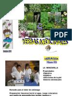 yerbasmedicinalespptminimizer-111027101954-phpapp02