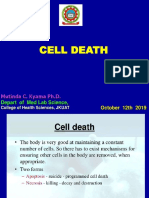 Cell Death presentation 11.10.2019