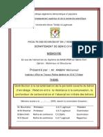 Mmoiremagister_Rabehi.pdf