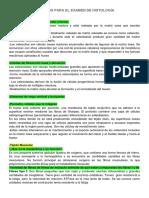 TEMARIOS PARA EL EXAMEN DE HISTOLOGÍA.docx