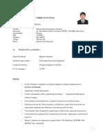 EXPERIENCIA SIMILARES.docx