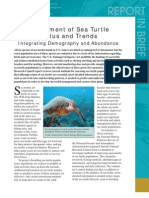 Assessment of Sea Turtle Status and Trends, Report in Brief