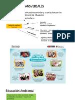 Nuevo PPTX Presentation.pptx