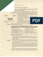 Lectura_Finanzas_Internacionales