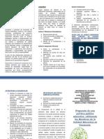 triptico Politica Publica.docx