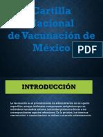 vacunas lis