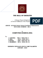 project-report-the-mall-of-emirates