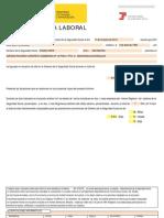 https___w2.seg-social.es_iportal_rqWrapper_report=_VidaLaboral_C070
