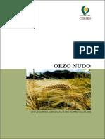 orzo_nudo