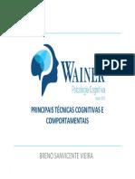 Módulo 2 - Principais Técnicas - Prof. Breno Sanvicente