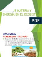 flujo de materia y energía en el ecosistema-1.ppt