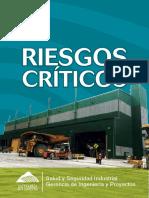 manual - riesgos criticos v1