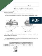 Determinantes Artigos - FE