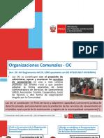 3. PPT Formalización de las OC (JASS) 17-03-2019.pptx