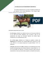 venta-caballos.pdf